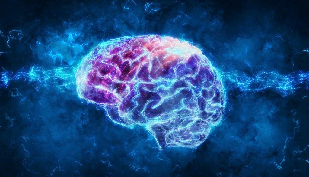 Нейромаркетинг, или как управлять мозгом покупателя